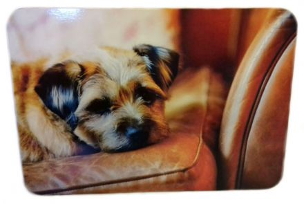 Flirty Gerty Border Terrier Single Corked Backed Placemat